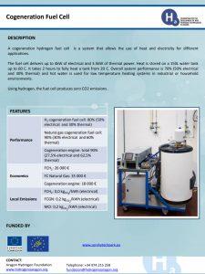 Cogeneration Fuel Cell